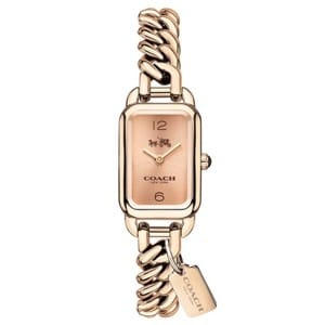 party watches coach